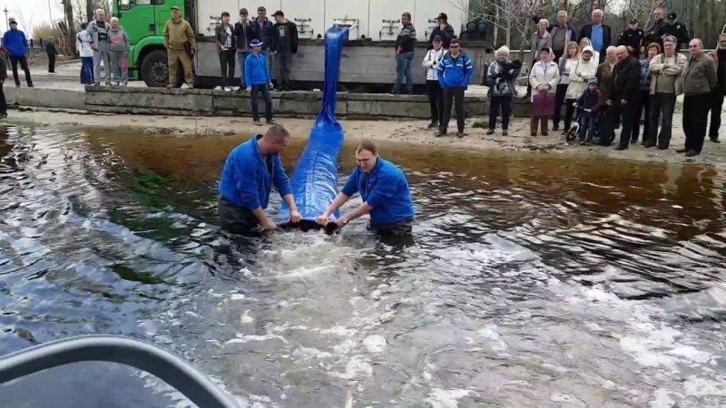 Рыбхозяйства Одесской области заселяют водоёмы толстолобиком и карасём