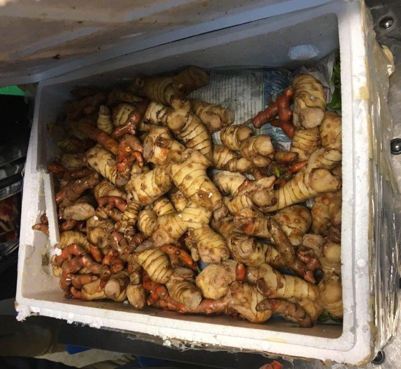 В Борисполе пограничники задержали 350 килограммов дуриана и других экзотических фруктов, которые везли в Одессу (ФОТО)