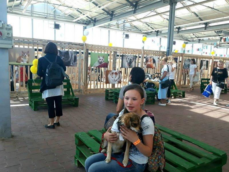 Первый фестиваль о животных для людей: как это было (ФОТО)