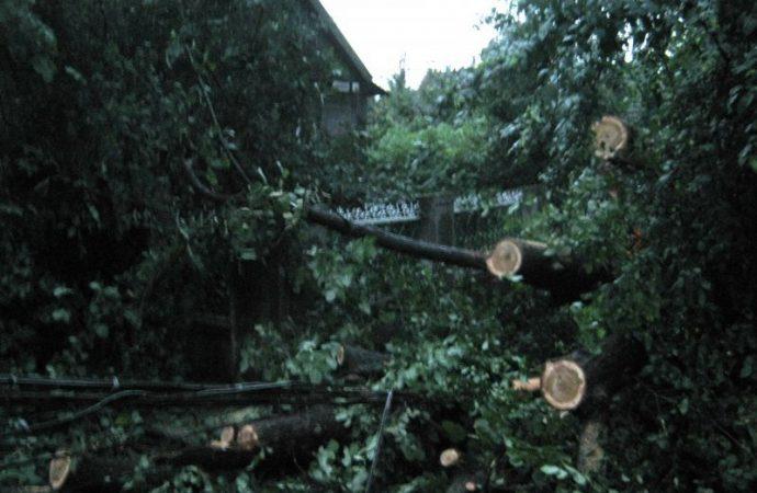 Ураган в Арцизе лишил горожан воды и вырвал деревья с корнями (ФОТО)