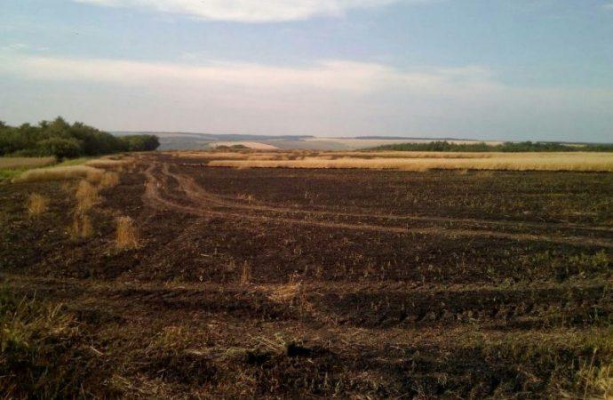 Битва за урожай: в Ананьевском районе горело пшеничное поле