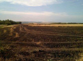 Гидрометцентр: Одесчину ожидают три дня грозовых дождей при чрезвычайном уровне пожароопасности