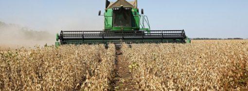 Выход сельхозпродукции на международный рынок становится проще