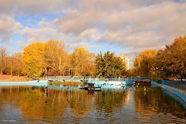 Погода 14 сентября: в Одессе будет тепло и без осадков