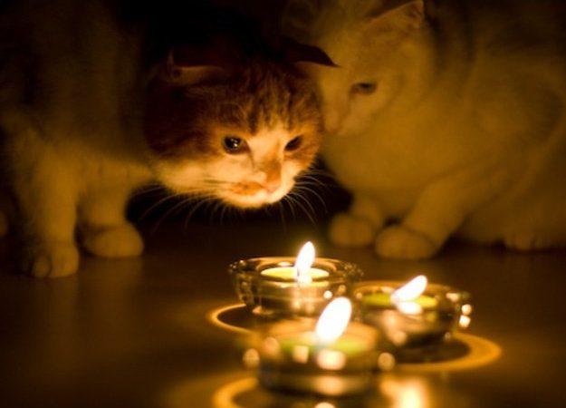 Сегодня Одессе массово отключат свет