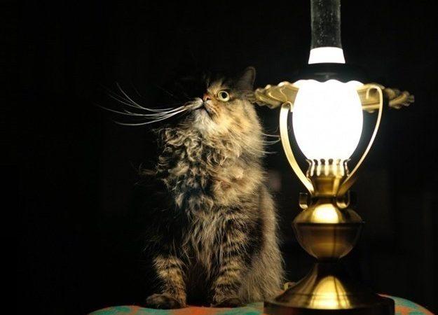 Сегодня без света оставят ряд домов в трех районах Одессы