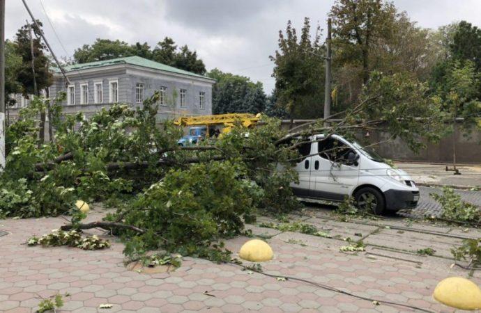 Два трамвайных маршрута блокировали упавшие деревья