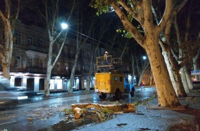Удар стихии нарушил работу семи троллейбусных маршрутов