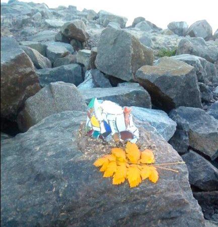 Неизвестные разбили скульптуру «сестрички» Витражика на берегу Крыжановки