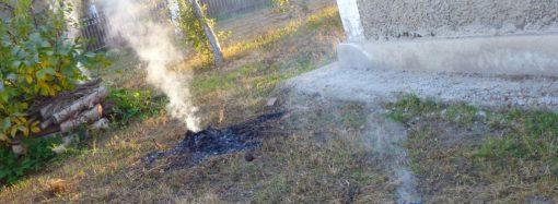 Борьбу с любителями сжигать листья начали в Одесской области