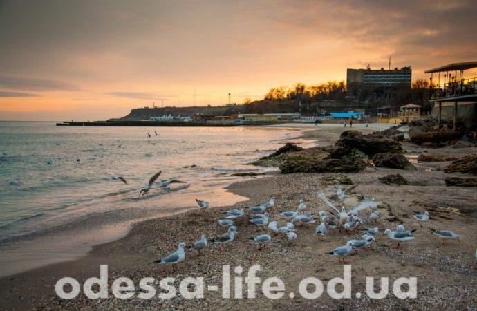 Погода 23 октября. В Одессе будет прохладно