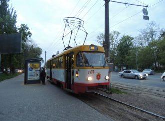 Восстановлено движение трамвая, заблокированного упавшей веткой