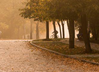 Погода 3 ноября. Из-за тумана в городе вводят штормовое предупреждение