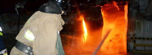Большой и маленький: спасатели ликвидировали в Одессе два пожара