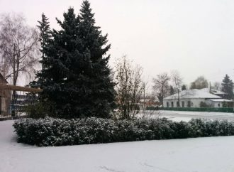 Зимняя сказка: на севере области выпал первый снег (ФОТО)