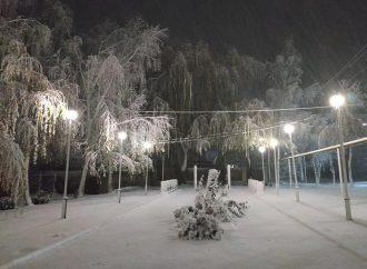 Обложной снегопад начался на севере Одесской области (ФОТО)