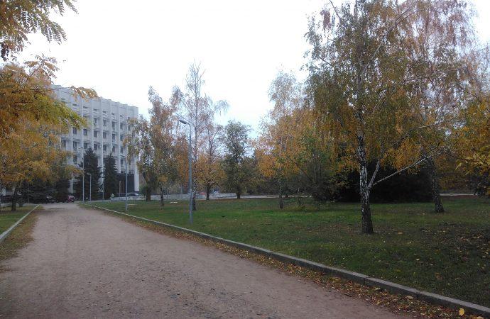 Погода 4 ноября. В Одессе будет малооблачно и почти безветренно
