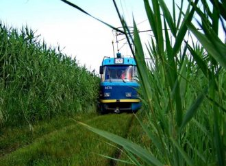Из-за непогоды в Одессе перестали курсировать несколько трамваев