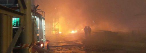 Спасатели локализовали пожар на маслоперерабатывающем заводе под Одессой (ОБНОВЛЕНО)