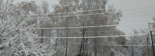 Погода 26 ноября. В Одесской области ожидается снегопад и гололед
