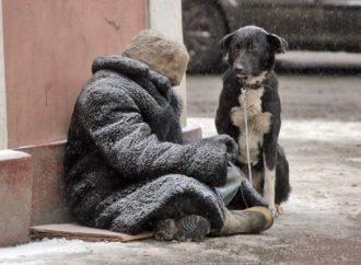«Общественный бюджет»: почему не поддержали проект помощи бездомным людям?