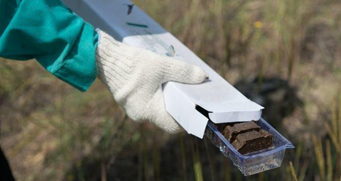 В Одесской области начинают иммунизацию диких животных от бешенства