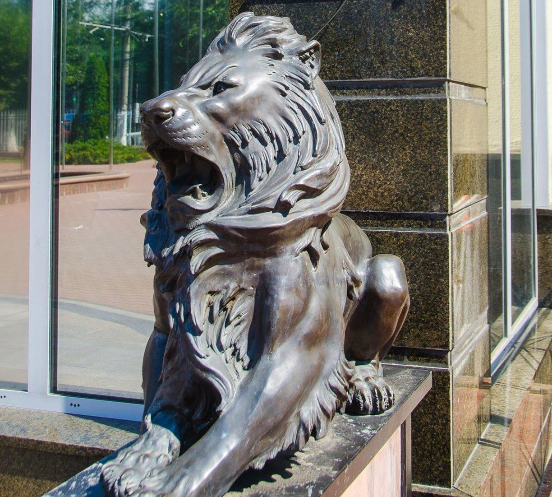 львы мгу