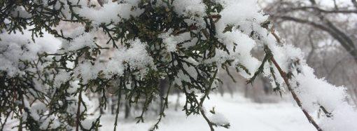 Погода 19 декабря. День Святого Николая будет самым холодным на этой неделе