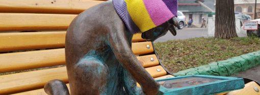 Пушинке вернули шапку, которую у нее «одолжила» дама с собачкой (ВИДЕО)