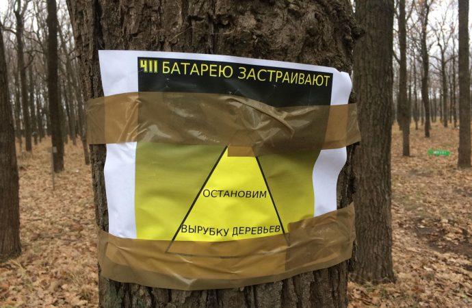 Департамент экологии: ни одно дерево на территории Мемориала 411-й Батареи спиливать не будут