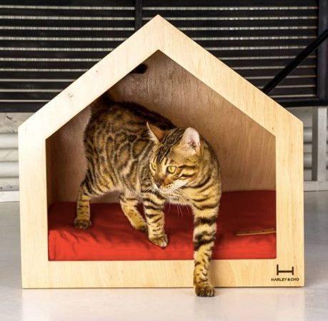 Домики для кошек: как выбрать лучшее убежище для вашего питомца