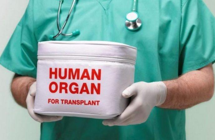 Расходы на трансплантацию в Украине вырастут в 4 раза