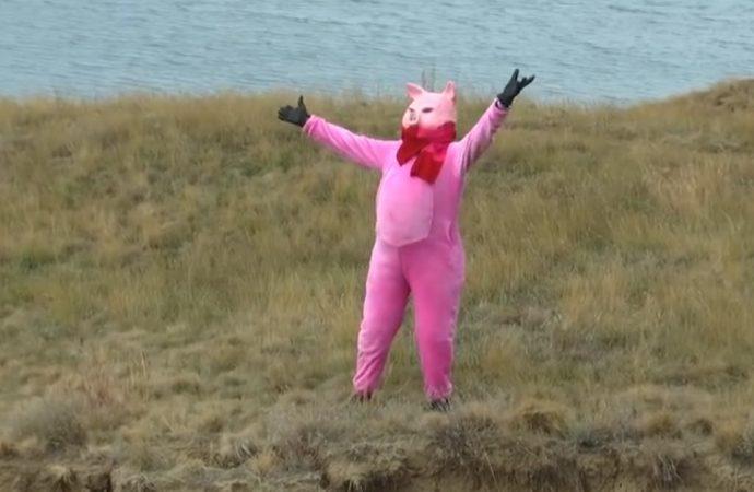 Свинья всему голова: директор Одесского зоопарка в преддверии Нового года снова повеселил горожан (ВИДЕО)