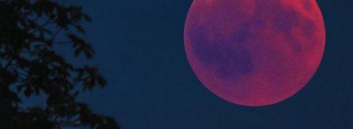 Лунное затмение можно будет увидеть в Одессе