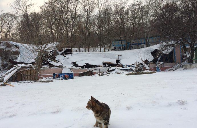 Что происходит на месте недавнего сноса пляжных домиков на Чкаловском?