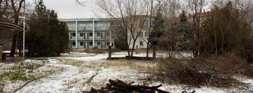 Санаторий «Якорь»: в ГАСКе прокомментировали вырубку деревьев в Маячном переулке