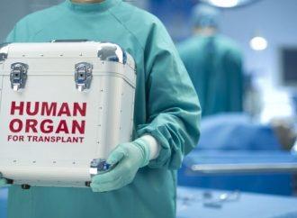 Цена жизни: что изменил новый закон о пересадке человеческих органов?