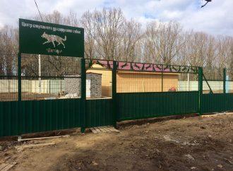 Территорию «Догтауна» снова обнесли металлическим забором