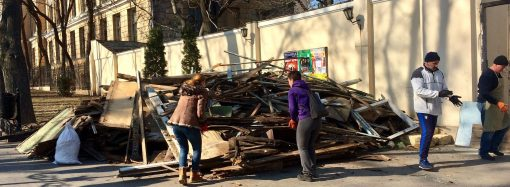 """Субботник в """"Летнем"""": в мэрии заявили, что активисты разрушили сцену и намусорили"""