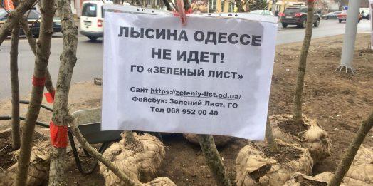 Проект «Зеленая Одесса»: общественники высадили 20 деревьев на Таирова