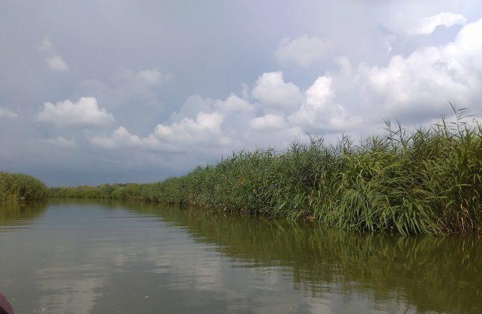 Реки осушаются, часть населения без питьевой воды: с чем Одесская область отмечает День водных ресурсов