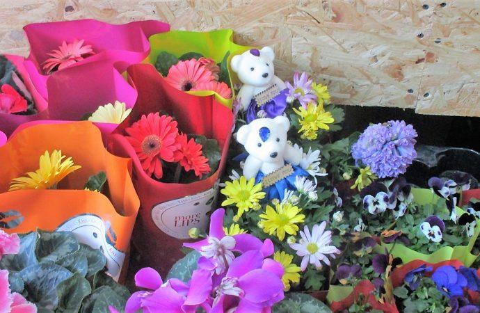 Мимоза на вес, «кусачие» розы и букетик в перышках: в Одессе цветочный бум накануне 8 марта