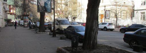Песок на зубах и икебана в урнах: что творил ветер в центре Одессы