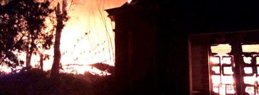 Полиция задержала двух бездомных по подозрению в поджоге здания на Академической