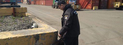 """Более полуторы тысячи человек эвакуировали из-за очередного """"минирования"""" в Одессе"""