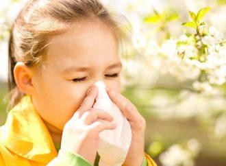В Одесской области прогнозируют вспышку аллергии