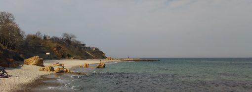 Есть ли угрозы нашему морю и каких сюрпризов ждать в будущем курортном сезоне?
