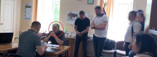 Скандал в зоопарке: директора подозревают в получении взятки