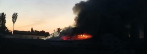 Пожар в Биопарке: никто не пострадал