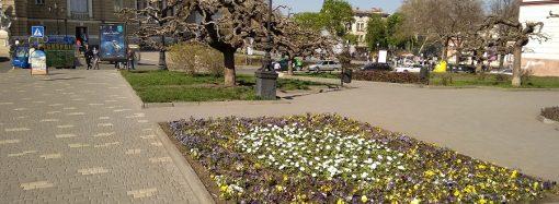 Погода 15 мая. В Одессе будет всё так же тепло
